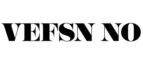 Logo Vefsn No