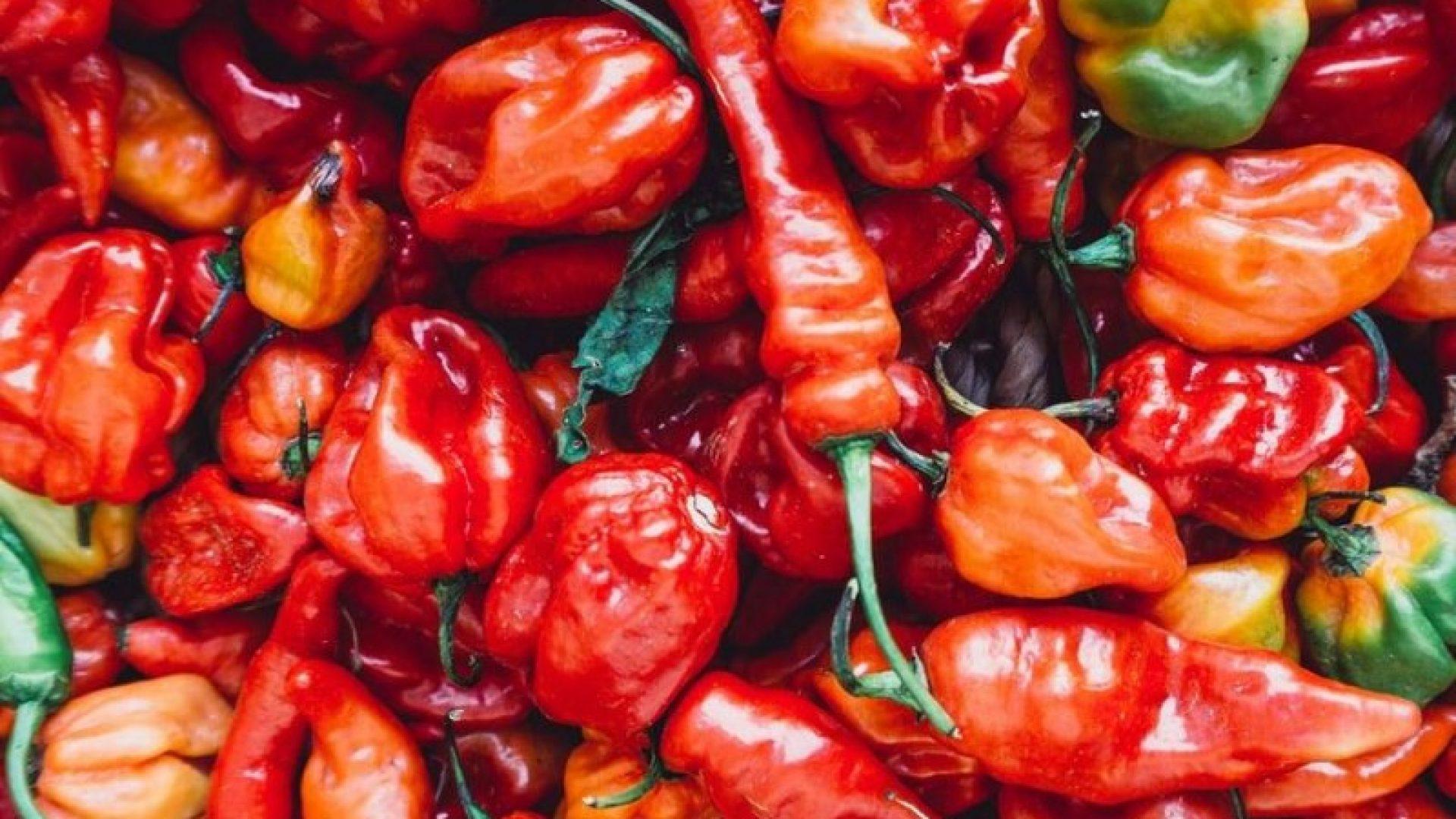 Mange typer chili